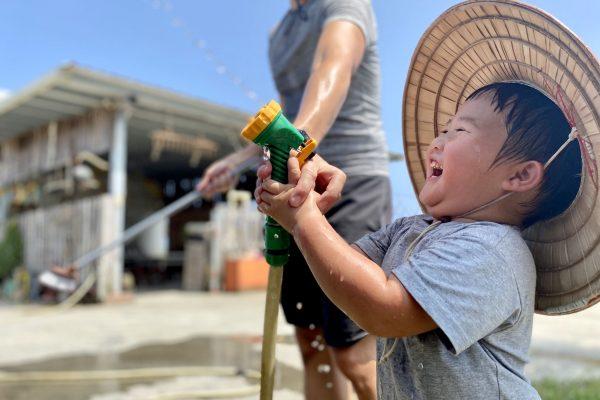 去不了泰國洗大象,在台灣幫可愛的水牛洗澡玩水更有趣!